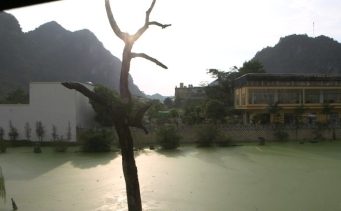 I Dream of Vietnam